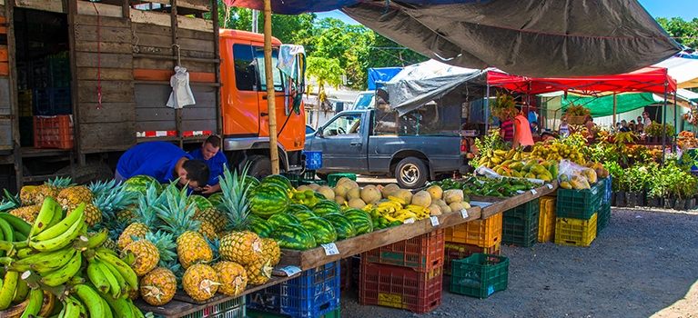 Tropical fruit on display at a Costa Rican farmer's market